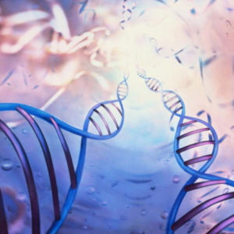 Активация плеядианских генов